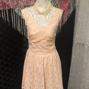 aniina Blush Eyelet and Sheer Dress